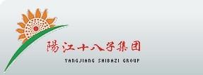 阳江十八子集团有限公司